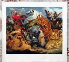 Ölbilder Ölgemälde Gemälde Rubens: Tijger en leeuwenjacht 80x100cm