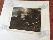 "Vintage Print of Jacob Van Ruisdael Forest Scene ~ 19""X24 7/8"""