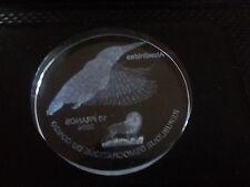 Congo 2004 Huge 10 fr-Hummingbird- Acrylic