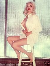 1950s Jane Mansfield in an open robe posing on a stool 8 x 10 Photograph
