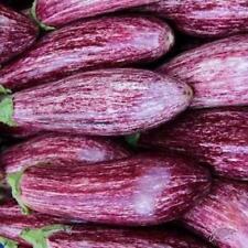 Aubergine Tsakoniki Cylindrical Egg Plant Appx 200 Vegetable Seeds