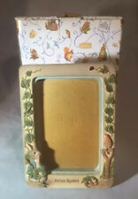 More details for the world of beatrix potter rabbit picture frame 470619