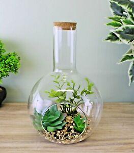 Large Faux Succulent In Glass Terrarium Indoor Garden Ornament