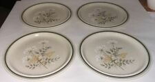 Stoneware Royal Doulton Pottery Dinner Plates
