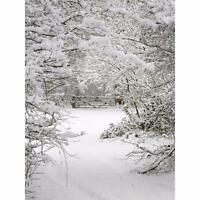 5x7FT Vinyl Winter Snow Forest Backdrop Studio Photography Photo Prop Background