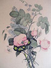 Vintage J.L. Prevost Floral Print No. 1 20x16 Roses Lilacs Primola Beautiful!