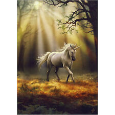 Glimpse Unicorn Anne Stokes Wall Plaque Forest Nature Fantasy Art Canvas Picture