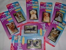 Fridge Magnets, Dogs, Cats, and Animals