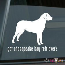 Got Chesapeake Bay Retriever Sticker Die Cut Vinyl - chessie cbr