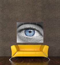 GIANT PRINT POSTER PHOTO BIOLOGY ANATOMY EYE BLUE CLOSE UP COOL PDC159