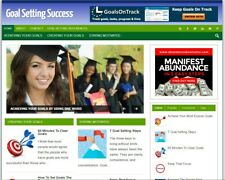 New Affiliate Goal Setting Plr Blog Turnkey Niche Website Business For Sale