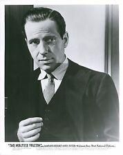 Humphrey Bogart The Maltese Falcon Unsigned Glossy 8x10 Movie Promo Photo