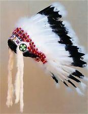 WARBONNET HEADDRESS INDIAN REGALIA HEAD DRESS POW WOW TRIBAL