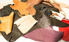 Genuine Ostrich remnants Skin Leather  Hide Pelt exotic for wallets watch straps