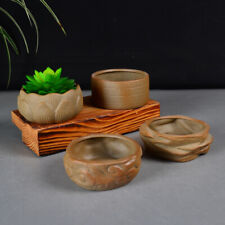 Mini Bonsai Pot For Sale In Stock Ebay