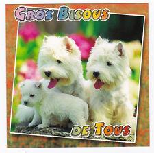 CHIEN  Chiot   CHIENS  carte postale   n°  6028/61  GROS BISOUS DE TOUS