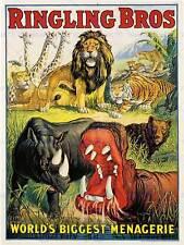 Publicité cirque ringling bros lion hippo rhino menagerie usa posterprint BB7808B