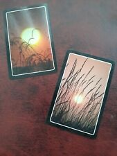 playing cards swap,  Two cards,  Sunset.