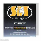 Guitar Strings Acoustic CRT Phosphor Bronze SIT Light CP1254 088058 for sale