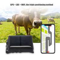 Animale da compagnia Inseguitore di energia solare Localizzatore GPS GPRS GSM
