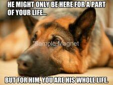 "GERMAN SHEPHERD Whole Life Dog Fridge Magnet 4"" x 3"""