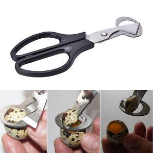 Caille oeuf ciseaux Cracker ouvre-cigare couteau en acier inoxydable l_fr