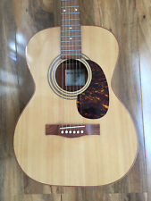 More details for gianninni acoustic. made in brazil. giannini gwsfkm