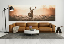 Hirsch Panorama 150x50 / Leinwand / XXL / 1Teiler / Wandbild / Panorama / Tier