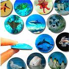 Glas Magnete stark bunt rund - Meer Tiere - Kühlschrank Tafel & Pinnwand, Kinder