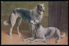 art Reichert Greyhound dog pair original old c1910s postcard