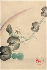 Japanese Flower Prints: Squash Vine, Blossom and Rainbow: Fine Art Reproduction