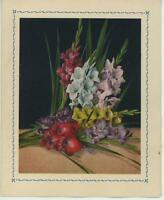 VINTAGE RAINBOW COLORS GLADIOLUS FLOWERS SHABBY NOTE CARD CHIC GARDEN ART PRINT