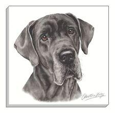 Evans Lichfield waggydogz Gran Danés Cachorro Negro Imagen Lienzo 40cm-40.6cm