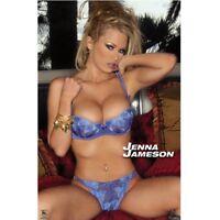 Jenna Jameson Blue Underwear Unterwäsche Sexy Poster Erotik 60x90 cm