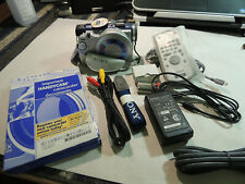 Sony Handycam DCR-DVD300 Digital Video Camera Recorder