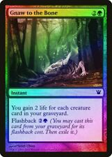 Gnaw to the Bone FOIL Innistrad PLD-SP Green Common MAGIC MTG CARD ABUGames
