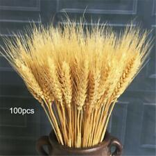 100pcs Artificial Wheat Natural Dried Flowers Bouquet Simulation Plant Decorate