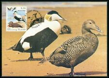 FINLAND ALAND MK FAUNA BIRDS DUCKS DUCK ENTEN CARTE MAXIMUM CARD MC CM m2036