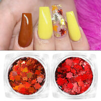 2 Boxes Nagel Pailletten Ahorn Design Nail Art Flakies Autumn Winter Dekoration
