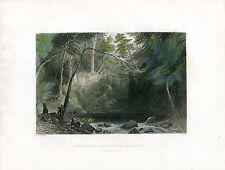 EEUU The Indian Falls near Cold-Spring grabado por H.Aldard.