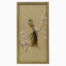 Vintage Real Bird Feather Folk Art Framed Under Glass Wall Hanging Hand Painted