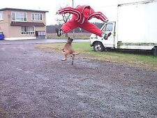 DOG TRAINING TRANSFORMER BITE SUIT POLICE K9 SCHUTZHUND K-9 CUSTOM MADE LOOK !!!