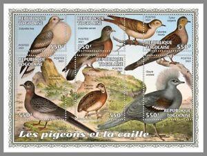 TOGO 2021 ** Tauben Wachteln Pigeons Quail #17-147aB