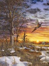 Jim Hansel Autumn Ringneck Farm Pheasant Art Print. 12 x 16