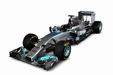MERCEDES BENZ W05 FORMULA 1 F1 RACE CAR POSTER PRINT 24x36 HI RES