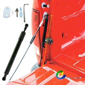 For Ford F-150 2004-14 Tailgate Assist Lift Support Shock Struts DZ43200