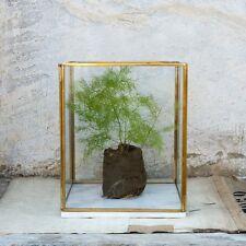 Large Marble Brass & Glass Terrarium Planter Candle Holder Lantern Dassie Rafiq