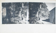 1980 PHOTOGRAPHS ON MATTE BOARD OF SUNLIT FOREST   CABIN - AMESBURY, MASS
