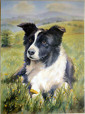 "SALE - BORDER COLLIE SHEEPDOG BY B.A.CROSBY DOG PRINT 12 X 16"" - BRIAN HUPFIELD"