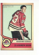 2012-13 Rockford IceHogs Andrew Shaw (Montréal Canadiens)